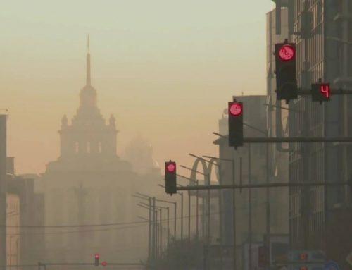 Замърсеният градски въздух – имат ли място етеричните масла в намирането на решения?